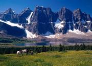 Как называется самая большая гора в мире?