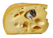 Русский сыр