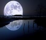 Есть ли жизнь на Луне ?