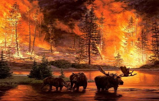 Что горело на Огненной Земле