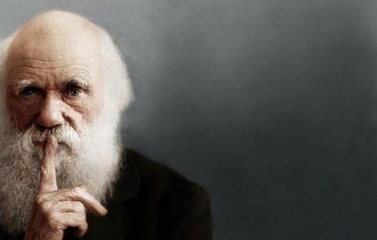 Как Англиканская церковь отреагировала на дарвиновскую теорию эволюции