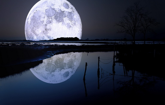 Как много Луны видно с Земли