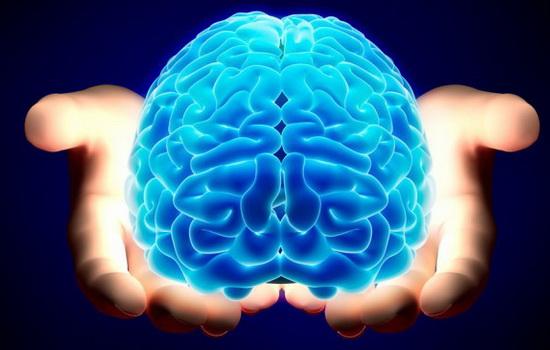 kakogo-cveta-mozg