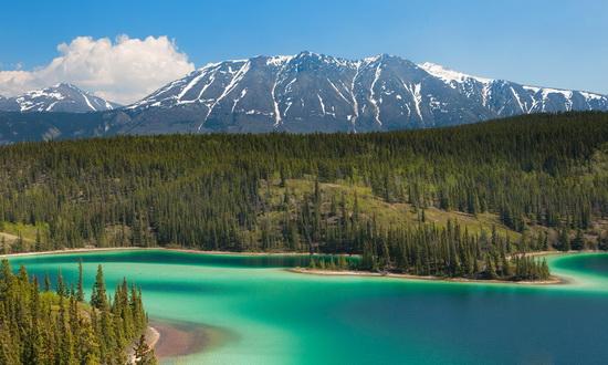 Кто продал Аляску американцам