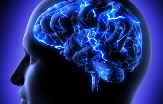 mozg-umnogo-cheloveka-tyazhelee-chem-mozg-duraka