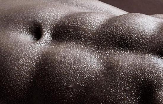 Все мышцы тела устроены одинаково