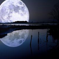 Как много Луны видно с Земли ?