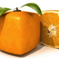Какого цвета апельсины на самом деле ?