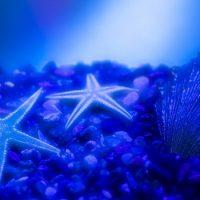 Морская вода — это смесь чистой воды и соли