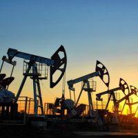 Образование нефти