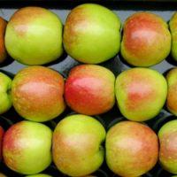 Сколько сортов яблок существует ?