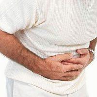 Стенки желудка нечувствительны к действию пищеварительных ферментов