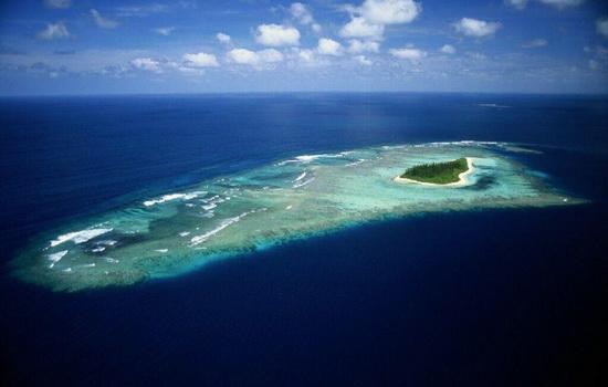 Канарские острова и канарейки