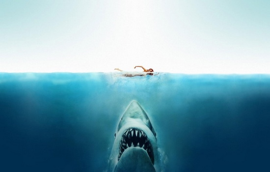 Откуда акула знает, что вы в воде ?